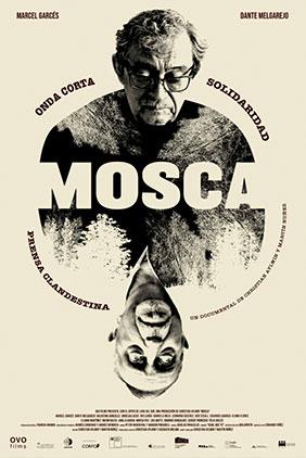 mosca_portrait
